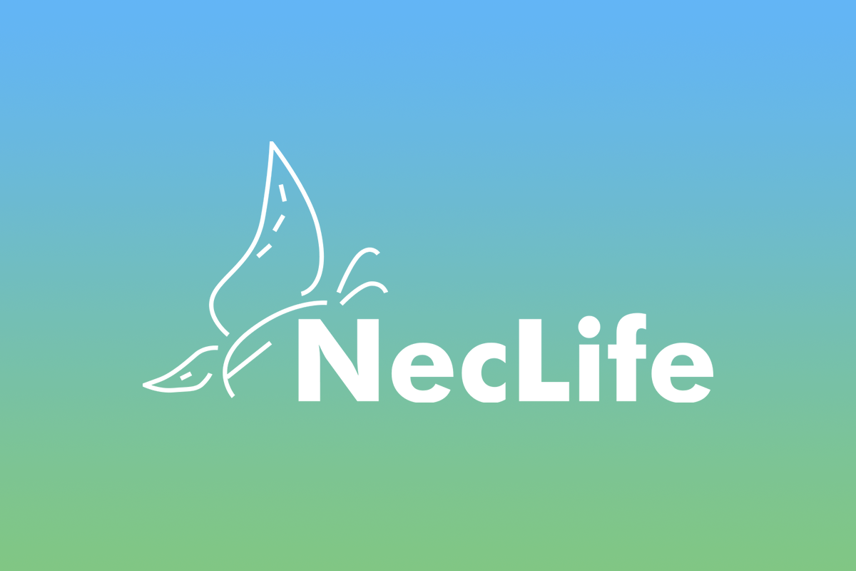 FeetPort Clients Neclife Nectar Lifesciences Limited
